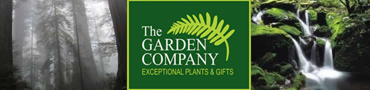 The Garden Company Newsletter